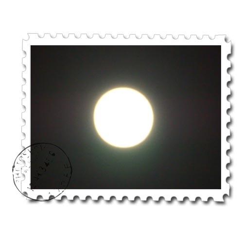 PA303634.jpg