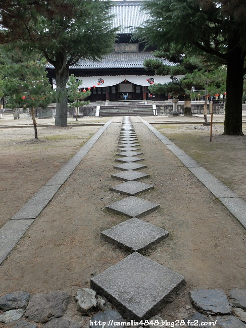 0104manpukuji-2.jpg