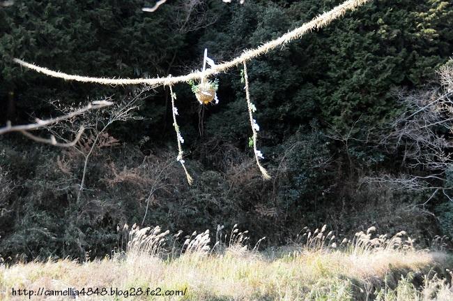 0113asuka-2.jpg