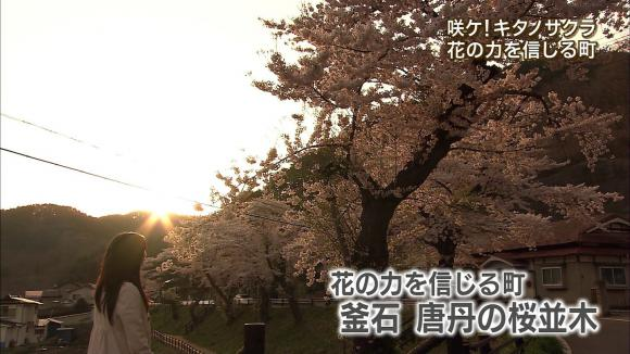aoyamamegumi_20120501_15.jpg