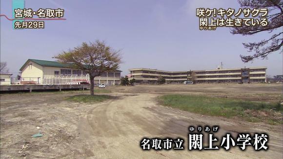 aoyamamegumi_20120508_12.jpg