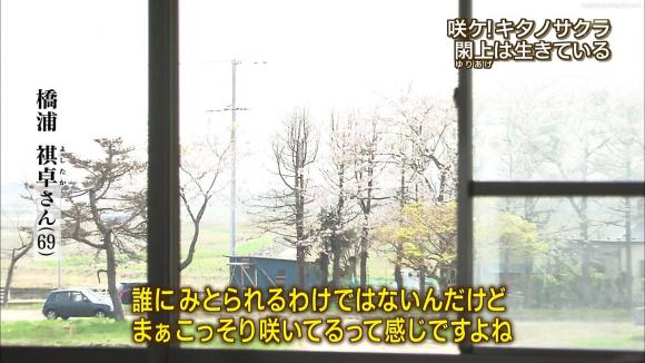 aoyamamegumi_20120508_17.jpg