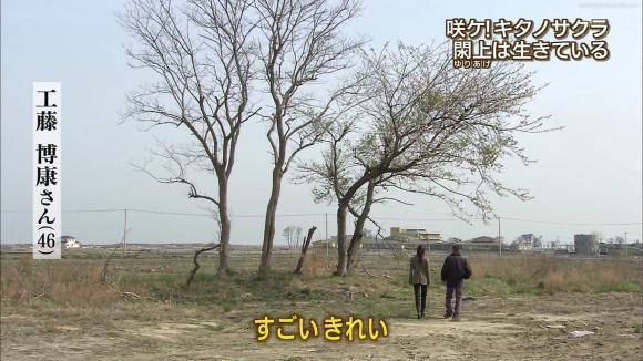 aoyamamegumi_20120508_20.jpg