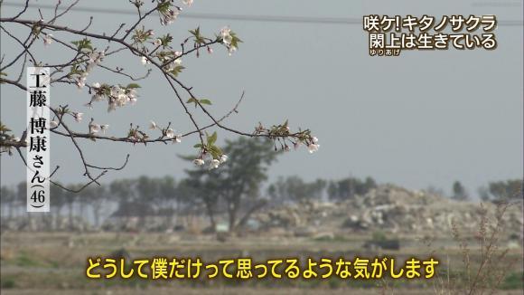 aoyamamegumi_20120508_22.jpg