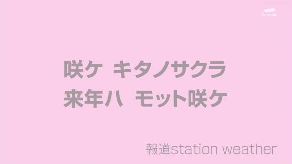 aoyamamegumi_20120508_36.jpg