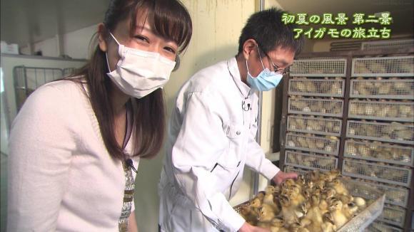 aoyamamegumi_20120601_21.jpg