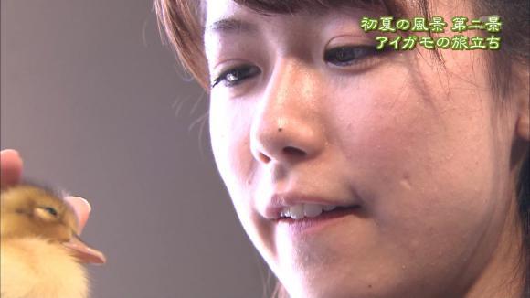 aoyamamegumi_20120601_31.jpg