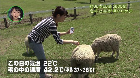 aoyamamegumi_20120605_49.jpg