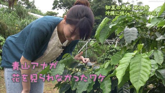 aoyamamegumi_20120613_26.jpg
