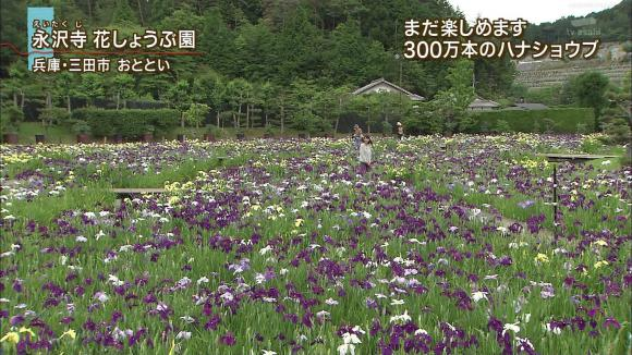 aoyamamegumi_20120704_18.jpg