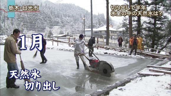aoyamamegumi_20120723_06.jpg