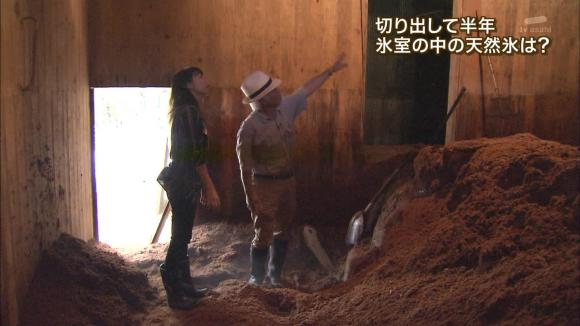 aoyamamegumi_20120723_13.jpg