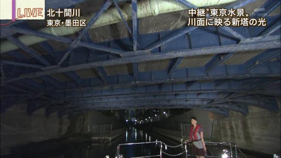 aoyamamegumi_20120817_20.jpg