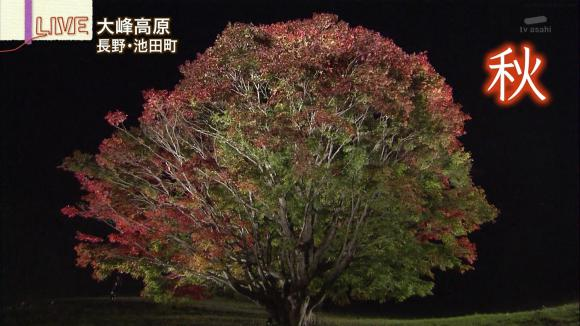 aoyamamegumi_20121022_21.jpg