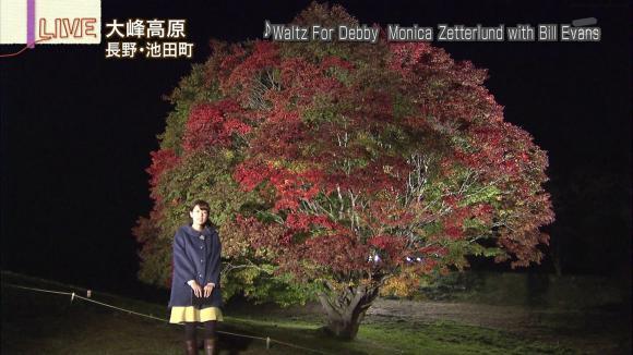 aoyamamegumi_20121022_23.jpg