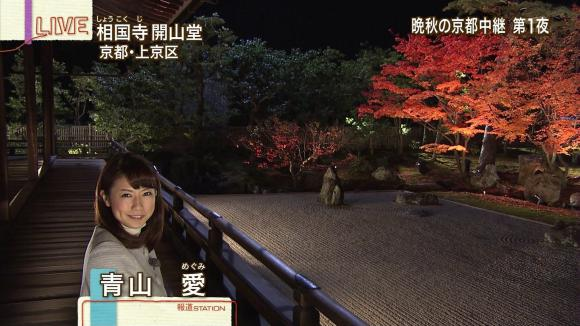 aoyamamegumi_20121126_06.jpg