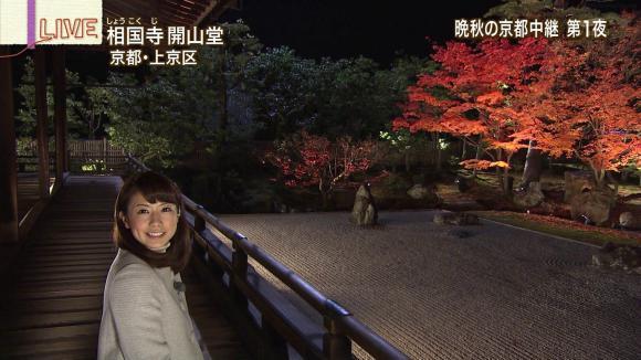 aoyamamegumi_20121126_12.jpg