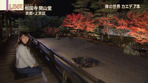 aoyamamegumi_20121126_17.jpg