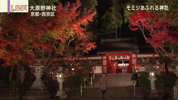 aoyamamegumi_20121127_21.jpg