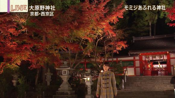aoyamamegumi_20121127_23.jpg