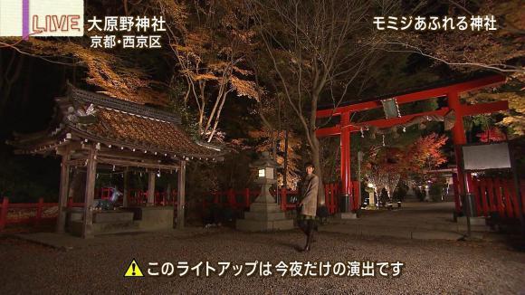 aoyamamegumi_20121127_27.jpg