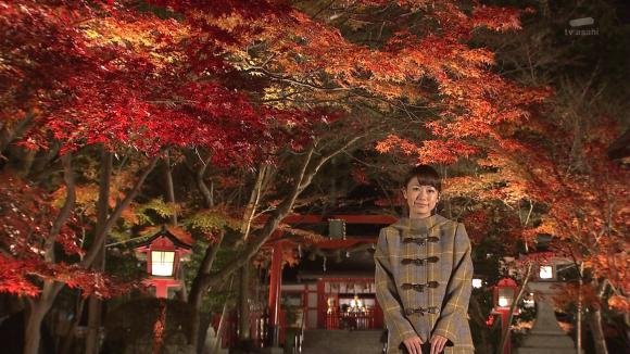aoyamamegumi_20121127_31.jpg