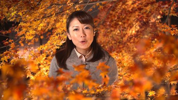 aoyamamegumi_20121128_03.jpg