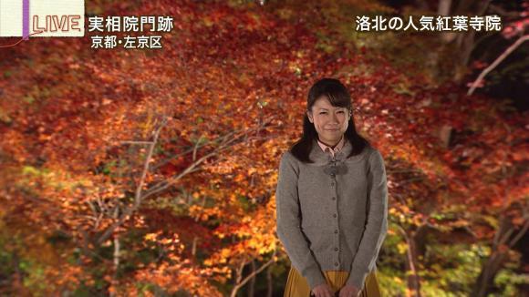 aoyamamegumi_20121128_10.jpg