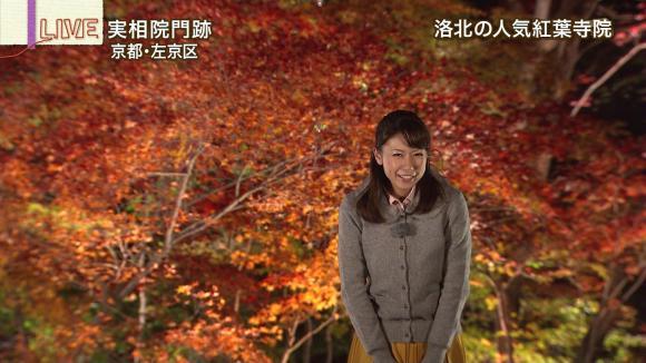 aoyamamegumi_20121128_11.jpg