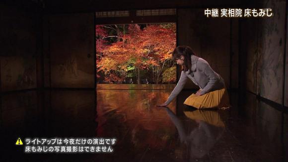aoyamamegumi_20121128_20.jpg