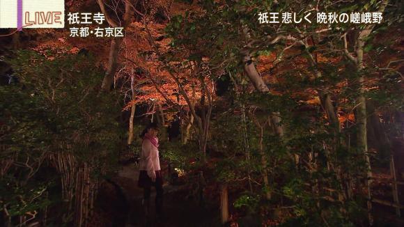 aoyamamegumi_20121129_09.jpg
