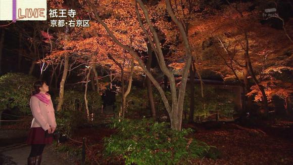 aoyamamegumi_20121129_11.jpg