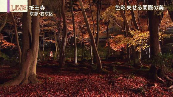 aoyamamegumi_20121129_13.jpg