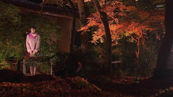 aoyamamegumi_20121129_15.jpg