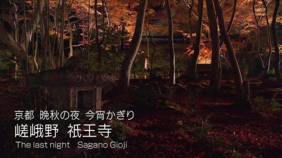 aoyamamegumi_20121129_16.jpg