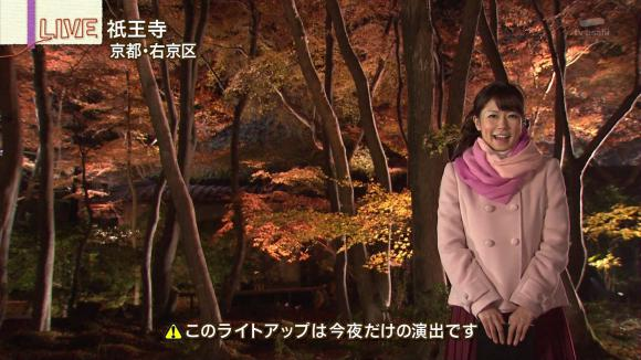 aoyamamegumi_20121129_19.jpg