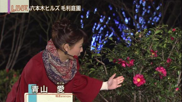 aoyamamegumi_20130131_06.jpg