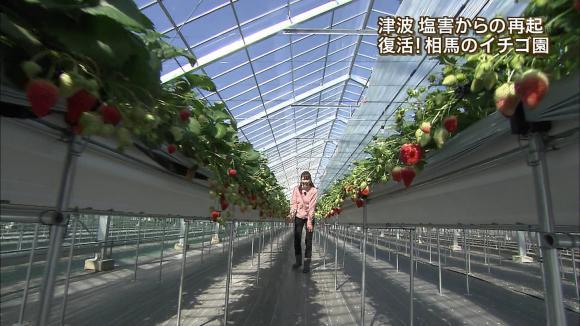 aoyamamegumi_20130228_14.jpg