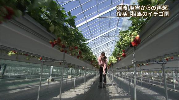 aoyamamegumi_20130228_15.jpg