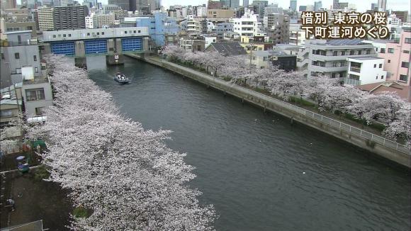aoyamamegumi_20130329_17.jpg