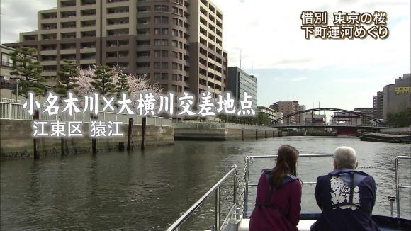 aoyamamegumi_20130329_21.jpg