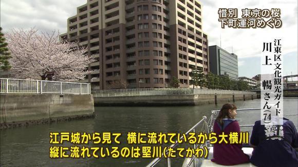 aoyamamegumi_20130329_22.jpg
