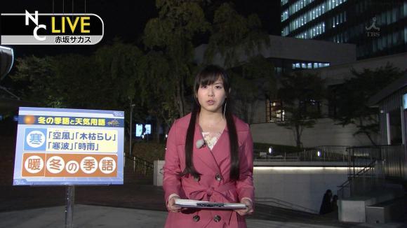 tamakiaoi_20121110_01.jpg