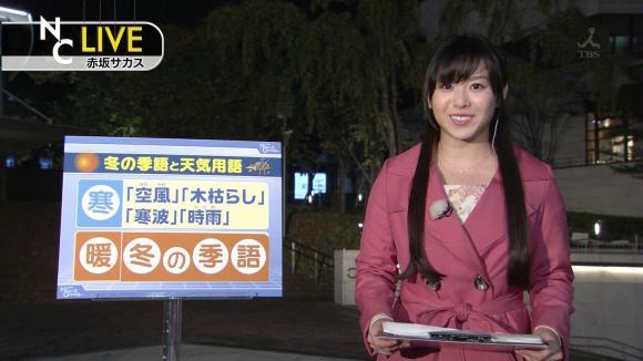 tamakiaoi_20121110_02.jpg