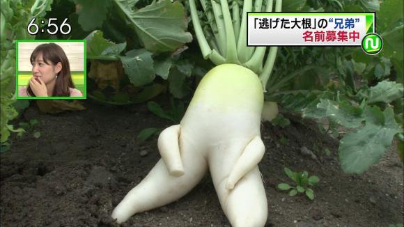 yoshidaakiyo_20121130_07.jpg