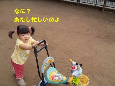 20141002-7実家編④