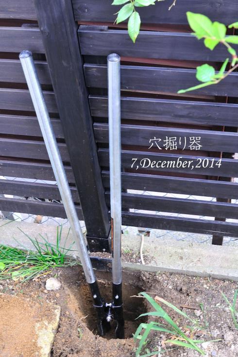 DSC_9933-L_convert_20141217195205.jpg