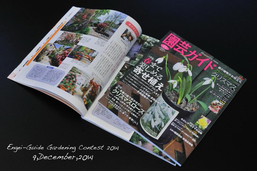 DSC_9954-shuusei-L_convert_20141209105934.jpg