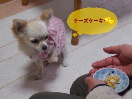 blog1082.jpg
