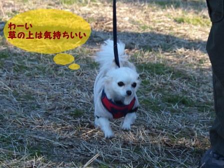 blog1108a.jpg